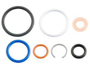 AP0002 - Alliant 6.0L HEUI Injector O-Ring Kit - Ford 2003-2007